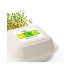 Image for Eco Friendly Food Packaging